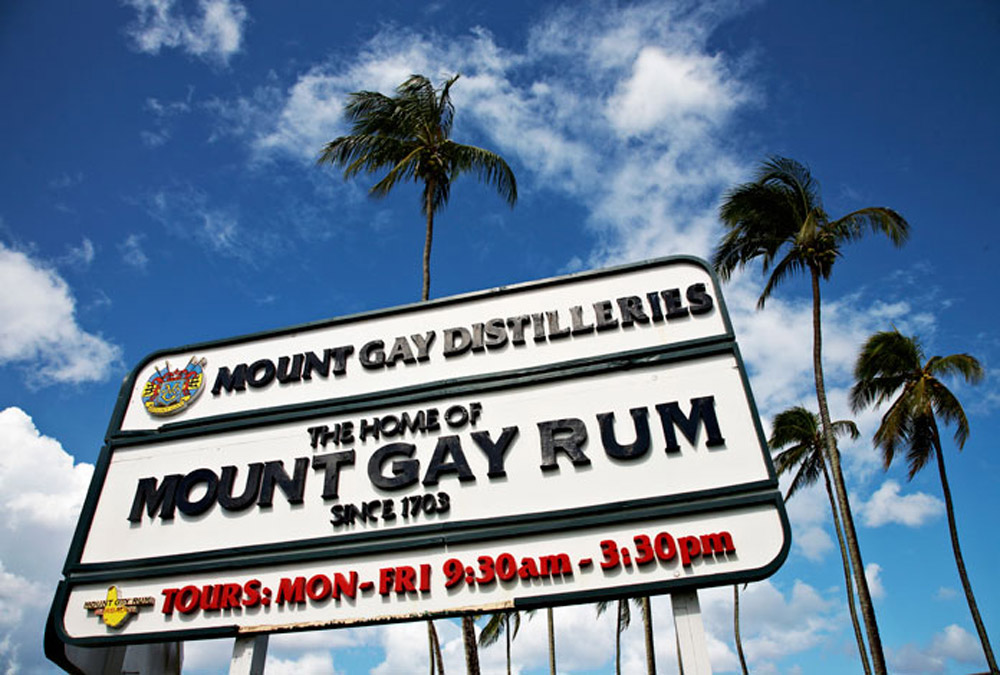 Distillerie Mount Gay